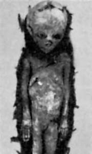 Одно из мумифицированных тел из 716-ти.
