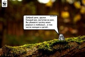 Tardigrada_18