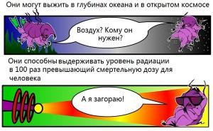 Tardigrada_30