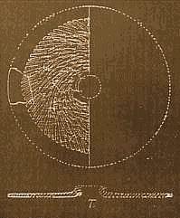 Чертеж дает некоторое представление о форме и структуре гранитных дисков племени дропа.