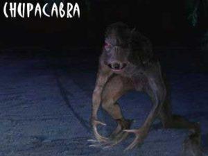 chupacabra_v